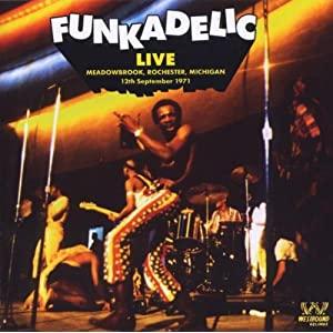 Funkadelic 51ScOmBSA2L._SL500_AA300_