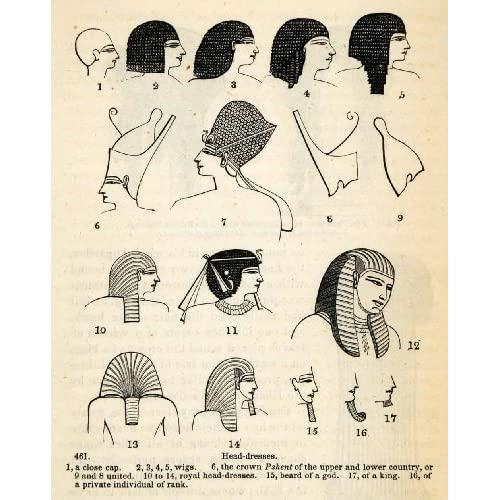 Cabello, peinados y pelucas en el antiguo Egipto 51mYvPA2UXL._SL500_AA500_