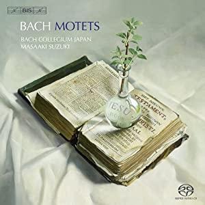 bach - Les Motets de J.-S. Bach 51zjKjt6xkL._SL500_AA300_