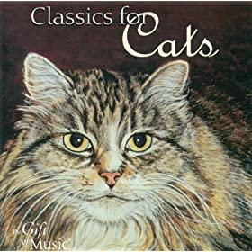 La Sinfonía del gato 61jKCg7TOUL._SL500_AA280_