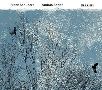 Franz Schubert : Musique pour Piano - Page 8 914tngKuQhL._SX425_