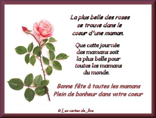 Bonne fête à toutes les mamans 44yB8oovVH_3i69WFpQNFzYLP48