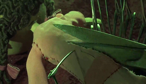 """Le Sens Caché du Film """"Coraline"""" VUeGV55z3ZuFHzRejfItKCz0_bE"""