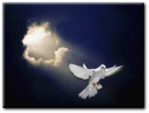 Citation 16/Pierre/l'Esprit du Seigneur renouvellera le cœur.../ VYtCpV9jKDh4eFU10vN2QCiZrKw