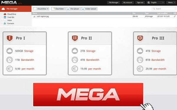 "Detalles sobre ""Mega"", el nuevo proyecto de Dotcom  - Página 6 561361"