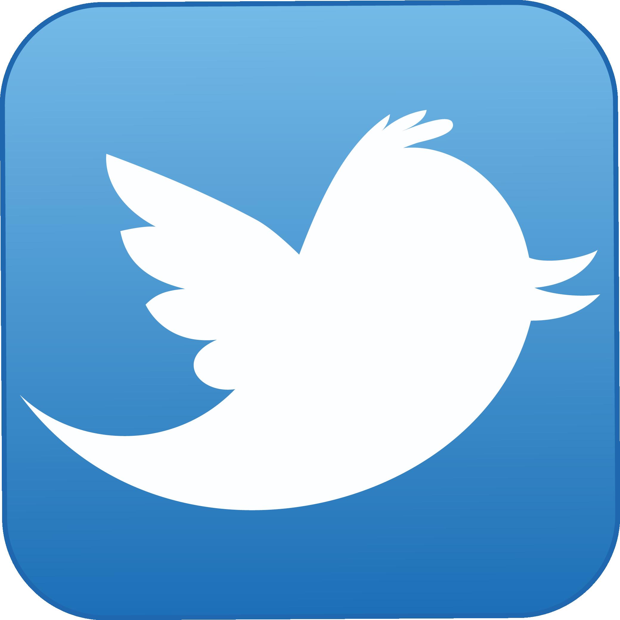 QUIENES SOMOS Twitter-logo