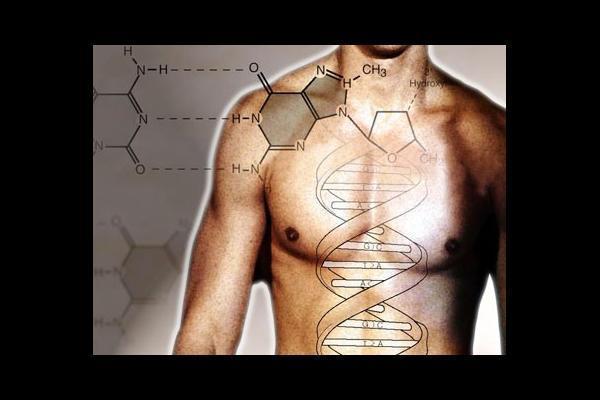 Zašto starimo? DNK4