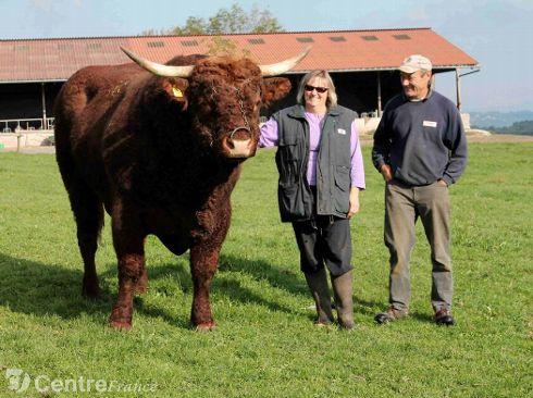 Vaches et Elevage Salers en Livradois - Page 2 Foch_Agnes_Joel