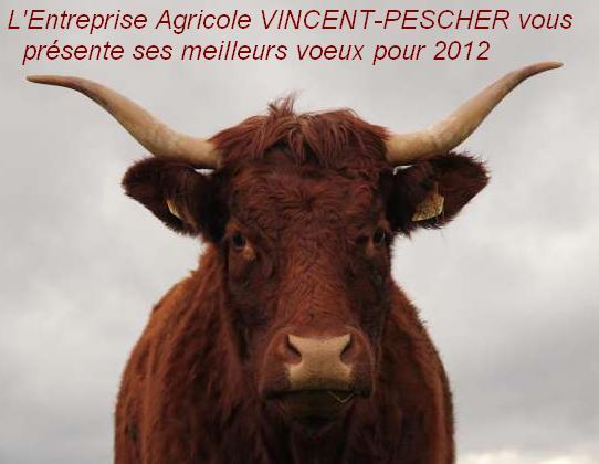Vaches et Elevage Salers en Livradois - Page 2 Voeux_2012_fra