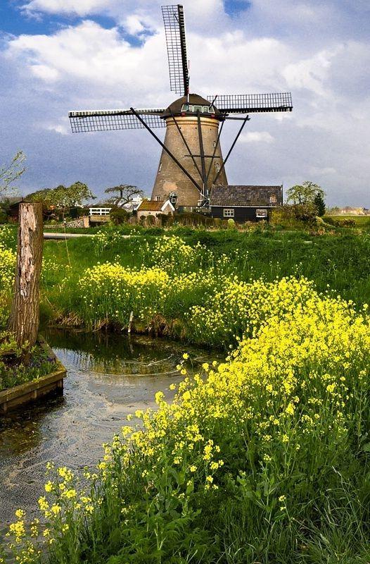 Moulins à vent, moulins à eau  611a8f64