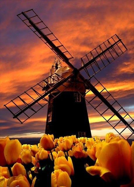Moulins à vent, moulins à eau  Ab2fd884