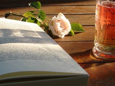 LIBROS = A SABIDURIA , CONOCIMIENTOS ..... Sonntagnachmittag2
