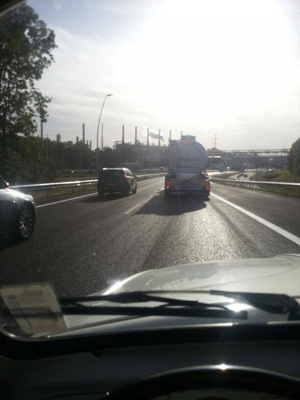 Bug(s) OVER the bridge ?? 20120816_083247_resized