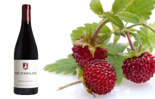 le malicieux Rémy Pedreno a élevé son célèbre Roc d'Anglade au rang de grand vin !... 2060035711