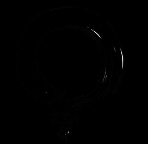 Deleuze - Page 2 Zen-300x291