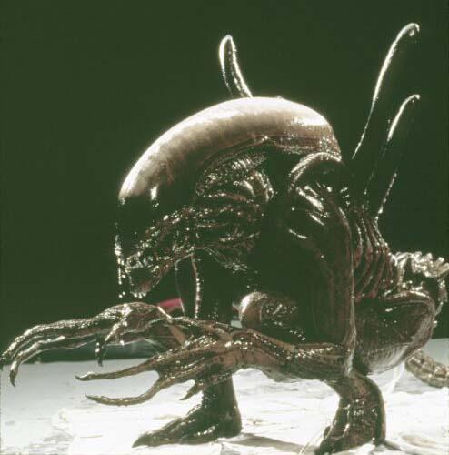 Humeur du jour... en image - Page 4 Alien1
