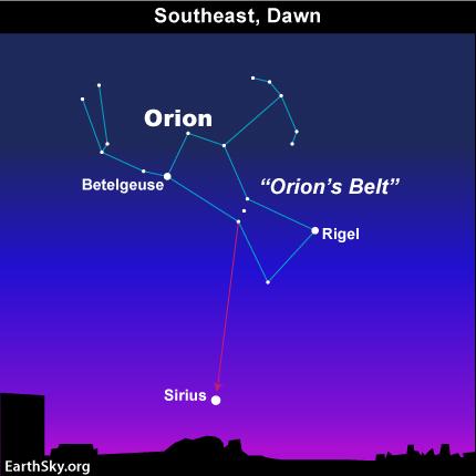 Orion the Hunter and Sirius the Dog Star 11aug25_430