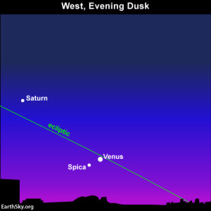 September 2013 guide to the five visible planets 2013sept04-night-sky-chart-venus-spica-430-300x300