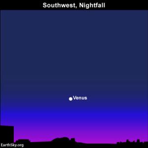 Full moon, Leonid meteors, Comet ISON on November 16-17 2013-november-16-text4-venus-night-sky-chart-300x300
