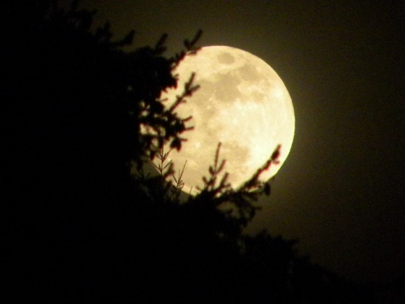 Smallest full moon of 2015 on March 5 Moon-waxing-gibbous-3-4-2015-Billie-C-Batrb-Whidbey-Island-WA-e1425554902935