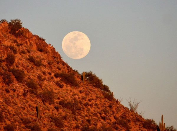 Smallest full moon of 2015 on March 5 Moon-waxing-gibbous-3-4-2015-William-Vann-e1425555555568