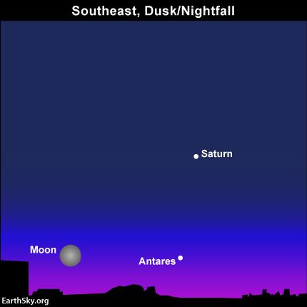Full Strawberry Moon on June 2 2015-june-2-saturn-moon-antares-night-sky-chart