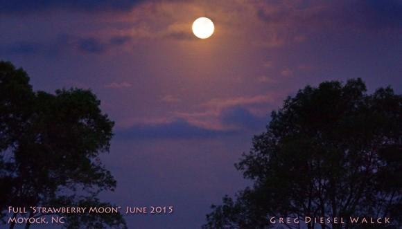 Full Strawberry Moon on June 2 Moon-6-2-2015-Greg-Diesel-Landscape-Photograhy-Moyock-NC-e1433240834239