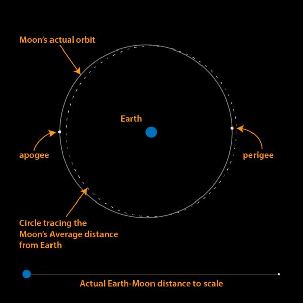 Everything you need to know: Hunter's Moon 2015 Perigee-apogee-brian-koberlein-e1443384711895