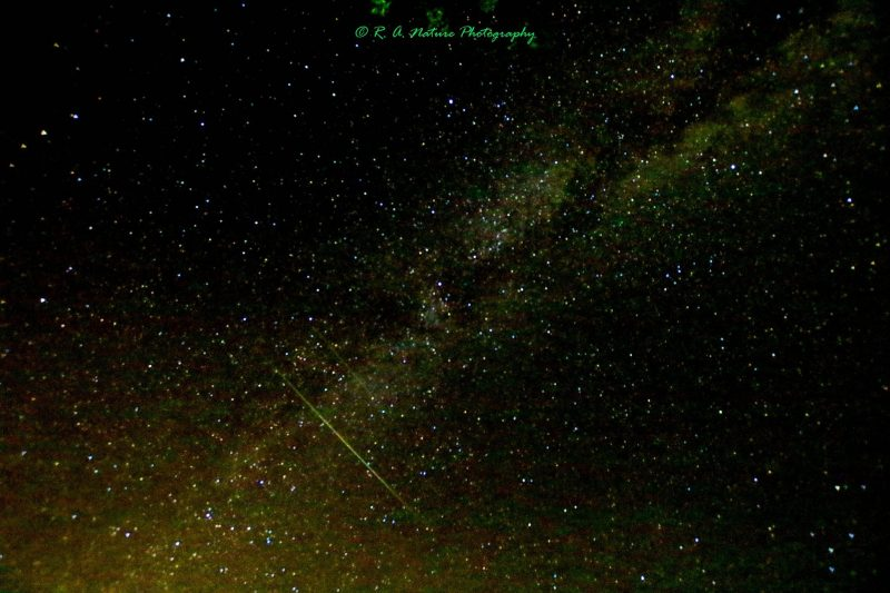 Perseid Meteor Shower Set to Light Up the Night Sky this Weekend Meteor-8-11-2017-Russ-Adams-e1502567425324