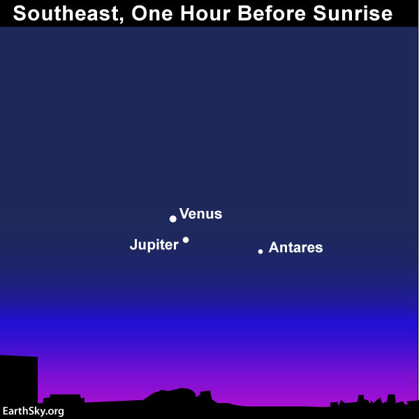 January guide to the bright planets 2019-janaury-21-venus-jupiter-antares