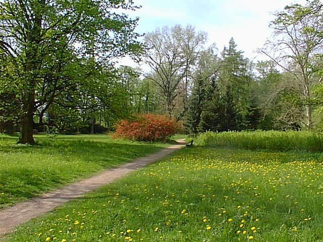 Darkmouth Memorial Park Park