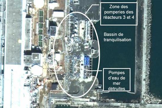 Fukushima - Page 5 Fukuka4