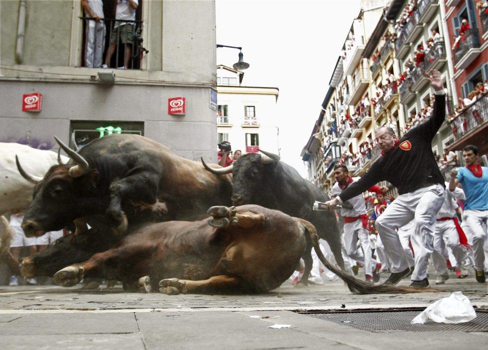 Maltrato animal. Un juez no ve maltrato animal tirar a un perro a un pozo de 30 metros 1436336058_562685_1436337822_album_normal