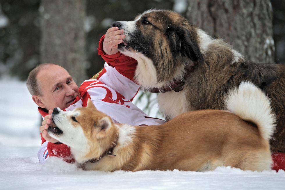 Vladimir Putin - Últimas Noticias. - Página 3 1439967570_691431_1439969970_album_normal