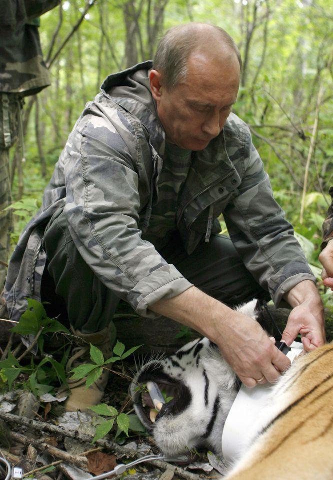 Vladimir Putin - Últimas Noticias. - Página 3 1439967570_691431_1439971970_album_normal