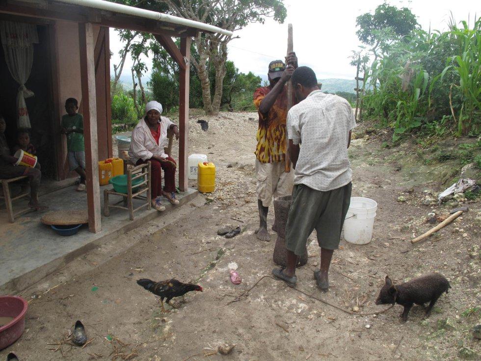 Haití después de enero de 2010 1401539352_166316_1401543077_album_normal