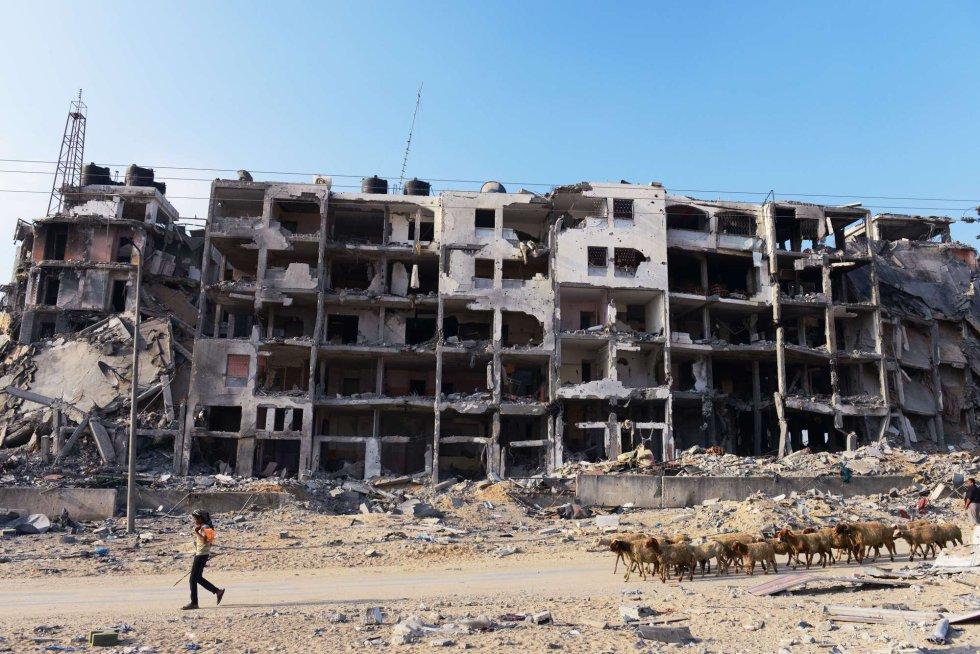 Palestina: Violencia ejercida por Israel en la ocupación. Respuestas y acciones militares palestinas. - Página 8 1408016397_069484_1408016691_album_normal