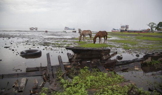 Nicaragua: sandinismo capitalista. 1441021884_905183_1441034264_noticia_normal