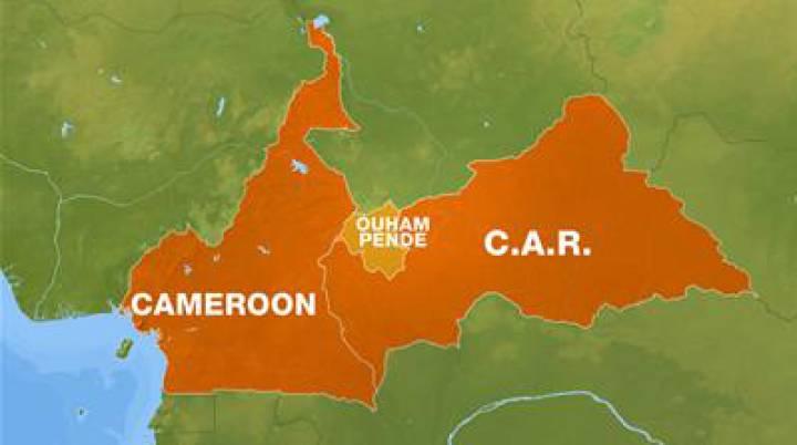 Republica Centroafricana: Insurgentes - Gobierno  - Página 3 1483521965_516723_1483522900_sumario_normal_recorte1