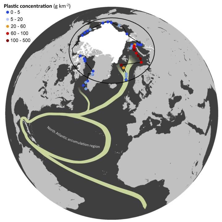 """Basura de plásticos, microplásticos: """"amenaza tóxica para la vida"""" marina. [vídeo] 1492549733_992148_1492558356_sumario_normal_recorte1"""