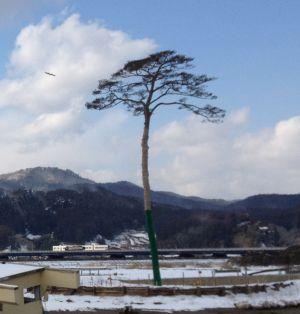 Sobre el terremoto en Japón. 1330694154_862261_1330796573_sumario_normal