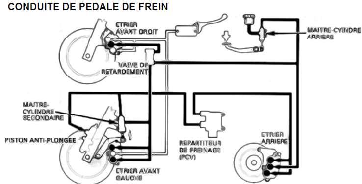 Freinage avant ou arrière ?? - Page 2 Freins_pedale_gold