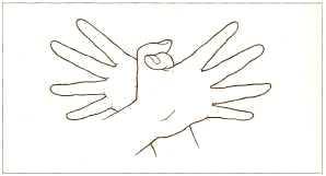 Garuda-Mudra (Гаруда-Мудра)   Гаруда – мистическая птица. Img16b