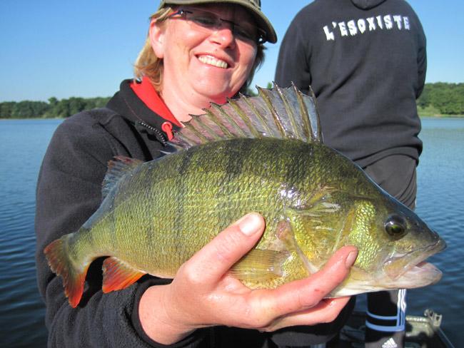 """avis sur la question """"quota poisson"""" Perche-43-110813-9"""