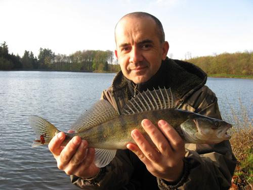 """avis sur la question """"quota poisson"""" Sandre-42cm-martinet"""