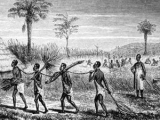 Negocio del esclavismo  a lo largo  de la historia  Esclavos