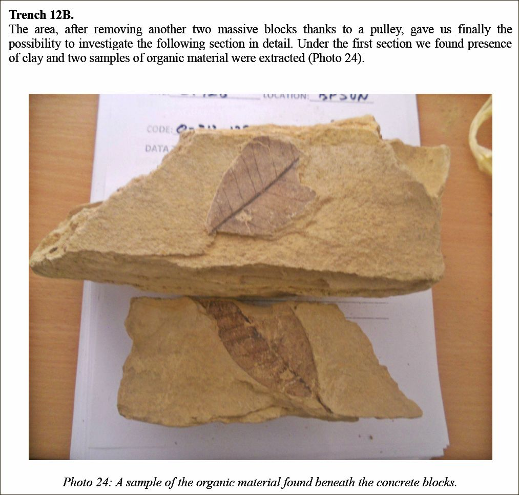 PHENONOMUS PYRAMIDS & TRIANGULATION ISM! Organic-material-found-in-between-two-concrete-blocks-on-the-Bosnian-Pyramid-of-the-Sun-2012