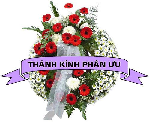 THÂN MỜI CÁC BẠN DIỄN ĐÀN  CHIA BUỒN CÙNG NGOHAIMI Thanhkinhphanuu