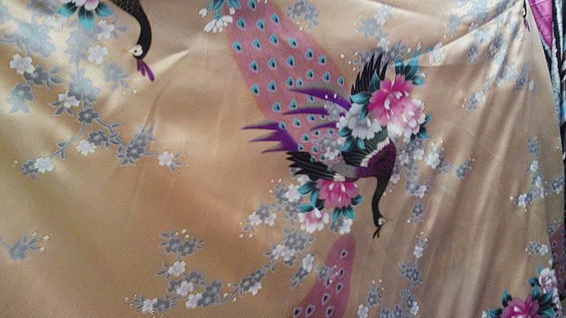 Ткани для костюма танца живота 85920ef92920a1ed0cf37d7f8dc1f751778329161955716