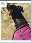 Ruffwear® (США)-легендарная амуниция от американских профи 18456d703e5f0c6e7d6cfe1a888b347b25cca7163897333